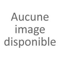 Aileron Becquet